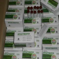 100iu Hygetropin Human Growth Hormone treat GH deficiency